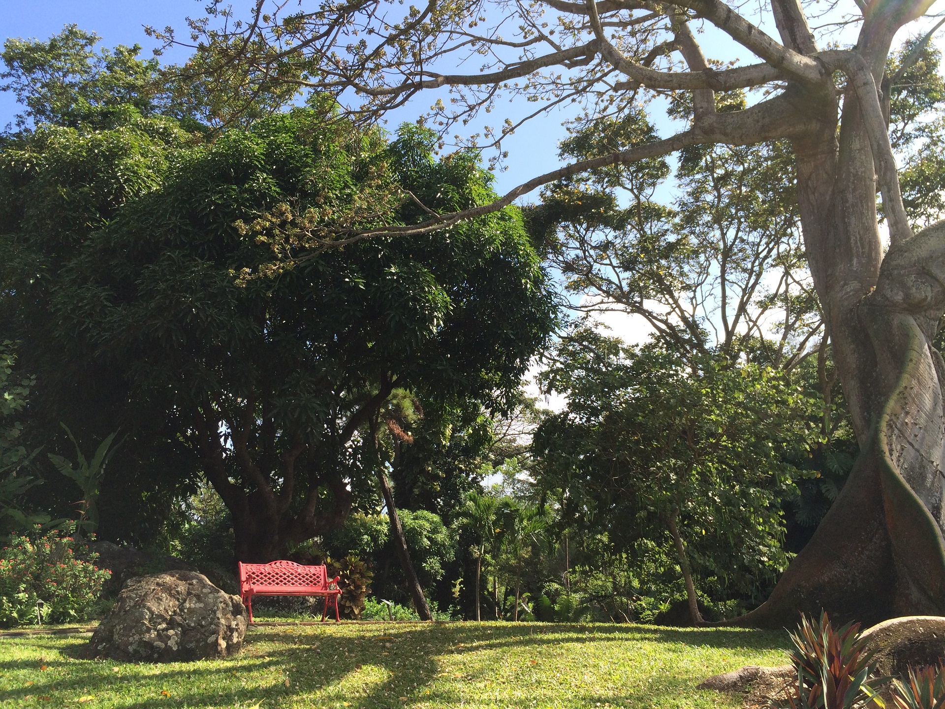 A voir karukera sunset ex maryjacktropic location de for Jardin botanique ouverture 2015
